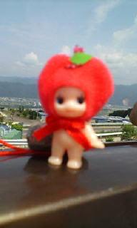 林檎キユーピーだょ♪